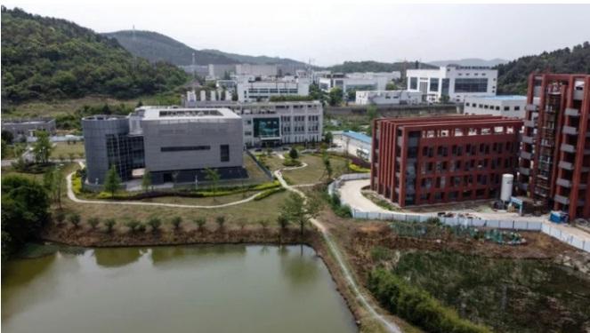 """Tại sao Phòng thí nghiệm Vũ Hán lại là trung tâm """"cuộc chiến virus"""" Mỹ-Trung?"""