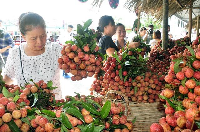 Hà Nội hỗ trợ các tỉnh tiêu thụ nông sản hậu Covid-19