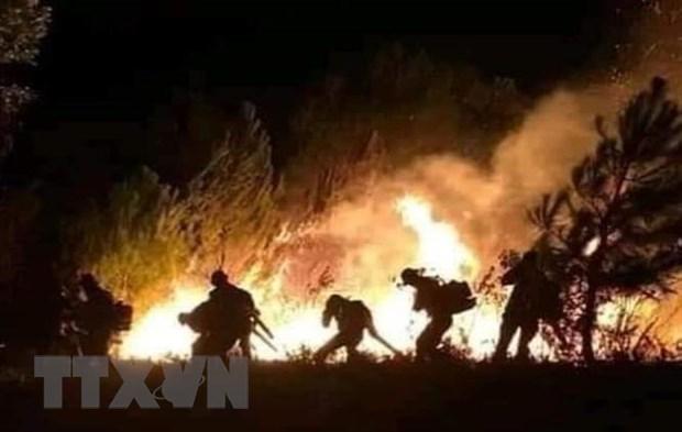 Nắng nóng gay gắt nhiều ngày, cháy rừng liên tiếp xảy ra ở các tỉnh miền Trung
