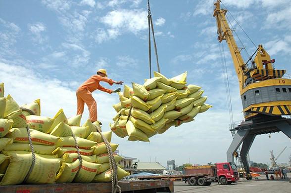 Xuất khẩu gạo Việt Nam: Đột phá từ chất lượng