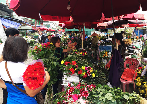 Thị trường hoa cắt cành sau Tết nguyên đán: Nguồn cung dồi dào, giá rẻ