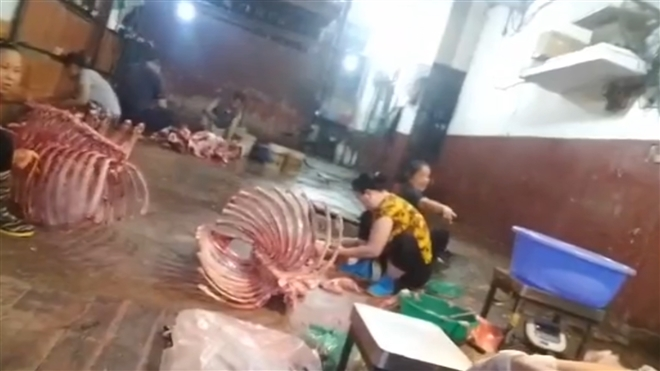 Lò mổ gia súc không phép hành hạ dân Hà Nội suốt nhiều năm