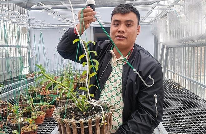 Quảng Ninh: Bắt giữ đại gia vườn lan đột biến liên quan buôn lậu than