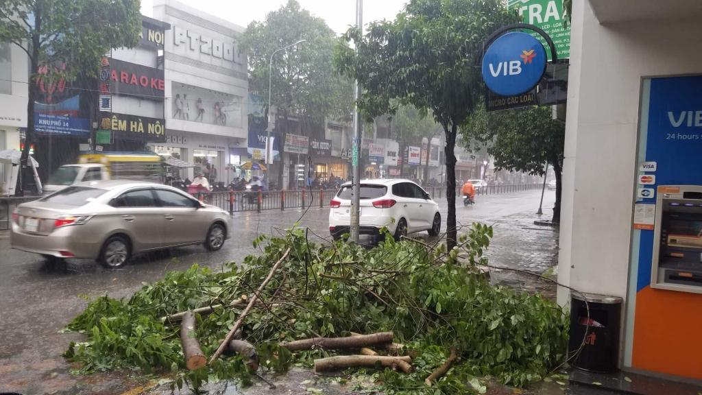 Từ nay tới cuối năm: Trên Biển Đông còn khoảng 6-8 cơn bão, áp thấp nhiệt đới