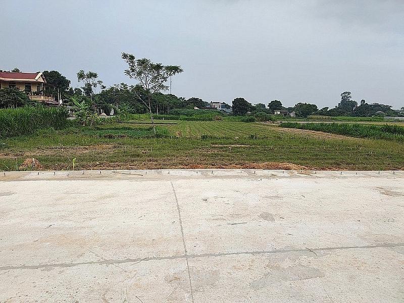 Thanh Hóa: Gần 50 lô đất trúng đấu giá bị hủy kết quả
